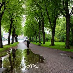 Rain in Stockholm today (Ulf Bodin) Tags: reflection rain sweden stockholm sverige regn djurgården stockholmslän canoneos5dmarkiii
