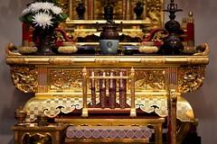 Lodi Obon  2014 (--Mark--) Tags: california obon bondance odori lodi bonodori jodoshinshu  sanjoaquincounty canonef135mmf2l nishihongwanji buddhistchurchoflodi lodiobon2014