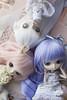(Brie G.) Tags: sisters doll dal groove joujou obitsu junplanning obitsubody dotori dollfamily hanaayame