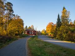 Vanha porvoontie (MikeAncient) Tags: mntsl finland suomi syksy fall autumn foliage syksynlehdet puu puut tree trees rakennus building
