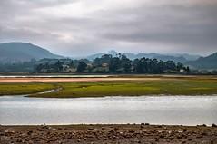 Ra de Villaviciosa (ccc.39) Tags: villaviciosa asturias ra bajamar algas agua nublado