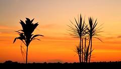 Airport Sunset (Gabriel Far) Tags: sunset airport iguaz iguazfalls cataratasdeliguaz misiones argentina