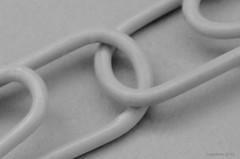 ...Paperclips... (Explored) (cegefoto) Tags: macromondays ppep paperclips plastic bw zwartwit macro explore