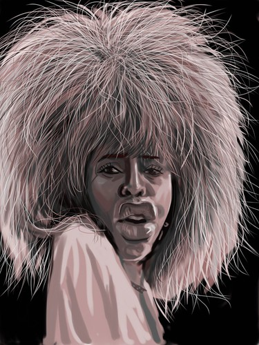 digital caricature of Tina Turner on iPad Sketchbook Pro - 2