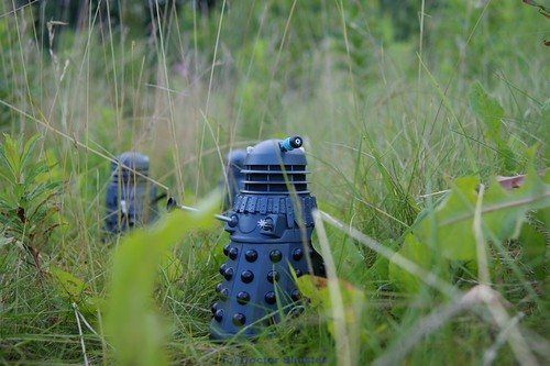 Dalek_Invasion_005