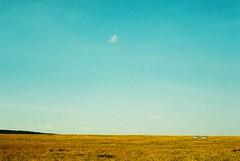 F1040025 (wedontneedears) Tags: africa summer slr film analog 35mm canon landscape xpro crossprocessed kodak kenya slide safari vans e100vs masaaimara eos630