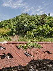20140518-SundayDrive-Inagawa-4 Photo