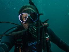 P1010840.jpg (Michael Bartosek) Tags: olympusepl3 catalinaisland olympus1442mm underwater catalina diving california pacificocean