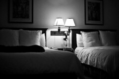 Dog Sleeping on Bed (William Elder) Tags: sleeping blackandwhite bw art modern dark 50mm blackwhite bed noiretblanc beds linen fineart best pillows inbed fa fineartphotography avantgarde whiteandblack blackwhitephotos williamelder austinphotoartist bestofbw distinguishedblackandwhite