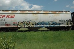 Sherm & Orkid (A & P Bench) Tags: railroad train bench graffiti pacific steel rail railway canadian graff railfan freight rolling rollingstock fr8 benching