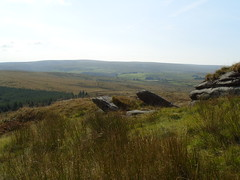 S1051758 (AppleJays) Tags: england nationalpark hills devon fields moors dartmoor moorland aonb tors