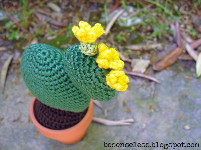 Cactus Uncinetto Amigurumi : The world's best photos of cactus and uncinetto flickr hive mind