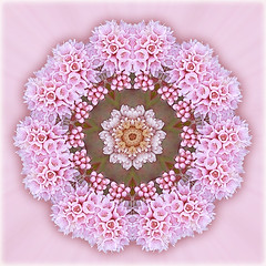 blossoming heart (SueO'Kieffe) Tags: nature digital photoshop mandala spirituality