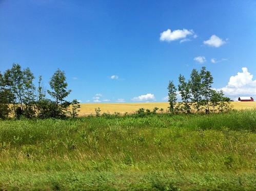 牧歌的風景