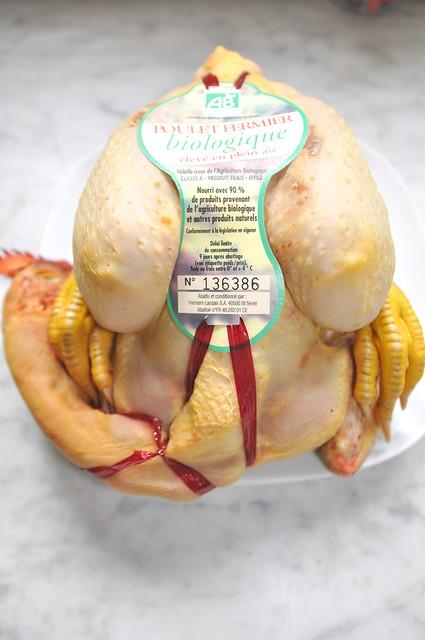 chicken licken1