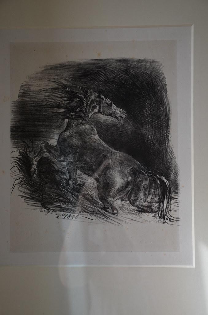 Cheval effrayé sortant de l'eau - Delacroix