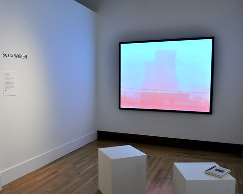 Red Lanscape [video installation]