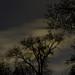 Lothar Massmann - Moving Moon Clouds