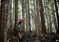 Stump Jumper (Jeremy J Saunders) Tags: trees canada nature bike forest jump bc ride mountainbike drop mtb stump squamish freeride stunt jjs d800 jeremyjsaunders