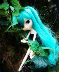 The guardin (Doll Angel (Nicole)) Tags: blue hatsune miku obitsu hatsunemiku pullipobitsu pulliphatsunemiku voicaloidmiku chipspullipobitsupullip