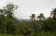 IMG_1940 (jaglazier) Tags: trees panorama mist mountains fog clouds rural palms islands landscapes january palmtrees fields farms forests stlucia streetscapes orchards 11214 deciduoustrees 2014 saintlucia dennery copyright2014jamesaglazier growves