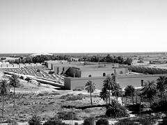 Reconstructed Palace of Nebuchadnezzar II, Babylon (Sumer and Akkad!) Tags: babylon babel iraq mesopotamia sumer lionofbabylon lion statue borsippa nabu temple ziggurat nebuchadnezzar neobabylonianperiod