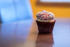 anniversary cupcake (259/366) (severalsnakes) Tags: da5018 ks2 missouri pentax saraspaedy sedalia cake cupcake dessert icing reflection sprinkles sweet treat
