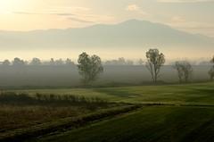 Nebbiolina mattutina (luporosso) Tags: natura nature naturaleza naturalmente nikond300s nikon paesaggio paesaggi landscapes landscape lazio italia italy nebbia fog alberi trees tuesday