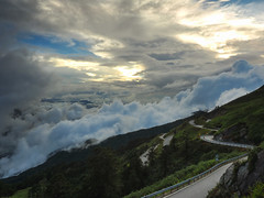 (andy818102) Tags: hehuanshan mountain clouds cloud road forest sunset sky scenery travel impressive amazing spot beautiful surprising taiwan taroko park nature national view spectacular                 sunrise