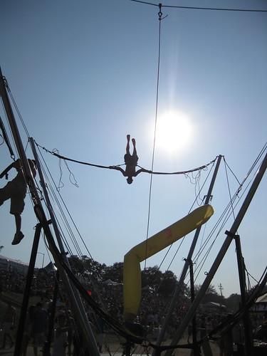 People bungee-bouncing