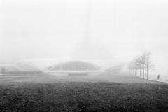 obscured (DavyRocket) Tags: bw usa film fog analog 35mm diy pentax scan milwaukee april diafine mam wi 50mmf14 mesuper 2011 9000ed iso640 lp400 legacypro nikonsupercoolscan