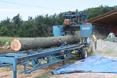 img_0982 (highest_vision) Tags: portable logging hemlock sawmill deepgap westernnorthcarolina sustainableforestry draftwood restorativeforestry