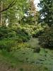 (Tom Paton) Tags: holland green netherlands pond nationalparkdehogeveluwe
