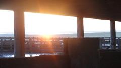 Manhã de junho (G.F Ilha) Tags: sun tree field brasil cow bonito paisagem bull campo arvore hereford inverno cavalo riograndedosul amanhecer tropa vaca riogrande mangueira gaúcho caçapava junho peão braford crioulo umbu sãogabriel soulth campeiro campeirismo