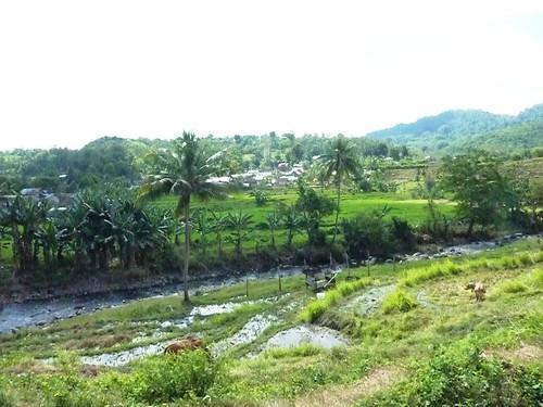 Sumbawa 4-Plage de Lakey (33)