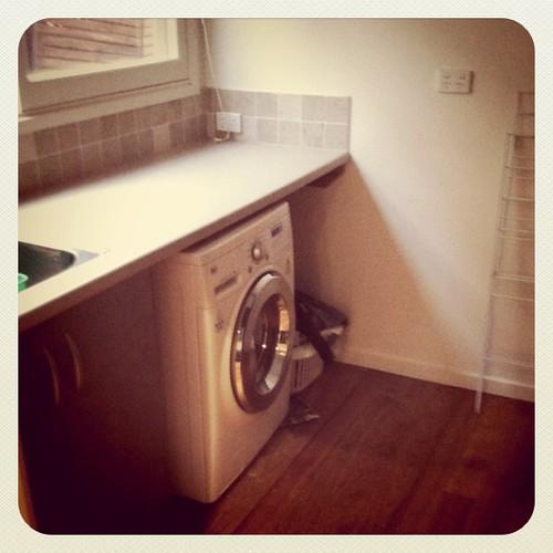 Laundry ... tick