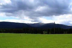 Greener than Green (Ladybird Photography) Tags: park sky mountains green field grass clouds scotland cows mark himmel highland national alvie aviemore bjerge skyer stables cairngorms skotland ker