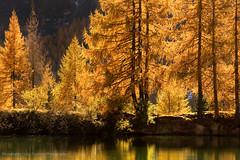 Lago delle Pozze - Passo San Pellegrino (Photoskatto) Tags: mountain alps montagne landscapes alpi dolomiti dolomiten theauthorsplaza
