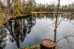 Pieni Karhunkierros (Tuomo Lindfors) Tags: kuusamo suomi finland topazlabs clarity dxo filmpack pienikarhunkierros oulangankansallispuisto oulankanationalpark pyrelampi lampi pond vesi water