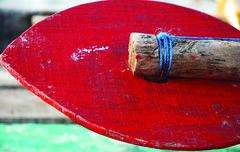 090227 Red Paddle (BavarIndia) Tags: asia tika