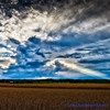Fall into Winter - Equinox to Solstice #14 - Gathering Storm (elviskennedy) Tags: buddha buddhalight cirrus cloud clouds corn cumulonimbus cumulus elvis elviskennedy evening farm fileld gatheringstorm god godlight hdr highdynamicrange kennedy landscape leica leicasl oats outdoor outside ray sky storm sunset thunderstorm trees up west wi wisconsin wwwelviskennedycom