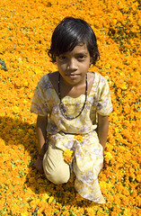Jaipur (De l'autre ct...) Tags: portrait fleurs jaune jaipur rajasthan 2007 inde eos5d