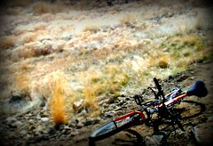 Bike (BlackAndBlueBeauty) Tags: orange field grass bike montana butte