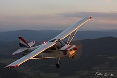 Loki (Champion Air Photos) Tags: champion airtoair bellanca citabria 7kcab