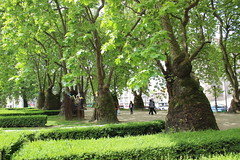 Praça da Cordoaria