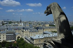 Gargoyle (Tooi Ake) Tags: city sculpture paris france church stone skyline cathedral carving gargoyle notre dame