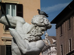 Where the bird is ? (PanilBrune) Tags: italien italy rome roma bird italia pigeon oiseau italie itlia itali itlia