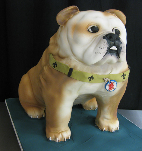Winston Bulldog Sculpted