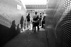Arena São Paulo (De Santis) Tags: world brazil white fish black eye cup branco brasil football stadium sãopaulo soccer sony preto fisheye arena peixe sp fernando olho f3 alpha 16mm mundo estádio copa futebol corinthians nex desantis 2015 itaquera sccp itaquerão