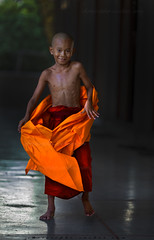 _MG_5222-le-17_04_2016_wat-thail-wattanaram-christophe-cochez-r (christophe cochez) Tags: burmes burma birmanie birman myanmar thailand thailande maesot myawadyy monk bonze novice religion watthailwattanaram travel voyage bouddhisme buddhism portrait